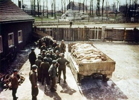 犹太女人被处决后装上卡车